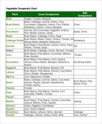 Companion Planting Chart For Watermelon Southern