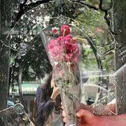 Aurora Robles (violetwhiff) - Profile | Pinterest
