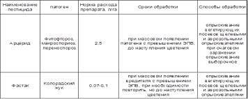 Курсовая работа Технология выращивания и хранения картофеля  Применение средств защиты картофеля на полях ОПХ Кочковское