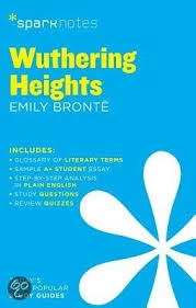 wuthering heights essay questions algebra essay questions wuthering heights essay prompts dialectic algebra essay questions wuthering heights essay prompts dialectic