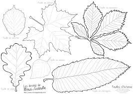 Coloriages Autumn Leaves Feuilles D Automne