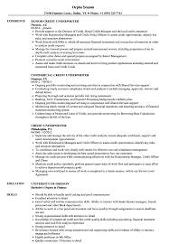 Underwriting Resume Examples Credit Underwriter Resume Samples Velvet Jobs 13