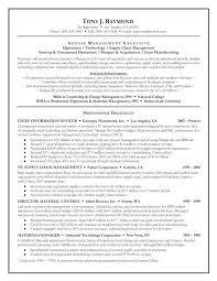 Resume Executive Summary Examples Adorable Good Executive Summary Resume Great For Orlandomovingco