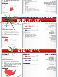 Spider Bite Identification Chart Pictures Spider Bite Infographics Visual Ly