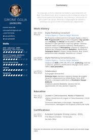 Digital Marketing Consultant Resume samples