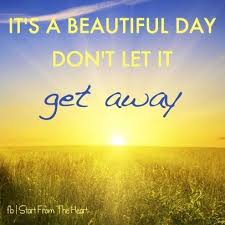 Beautiful Sunny Day Quotes Best Of What A Beautiful Day Quote The Best Collection Of Quotes