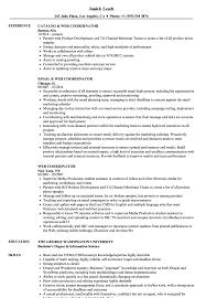 Web Coordinator Resume Samples Velvet Jobs