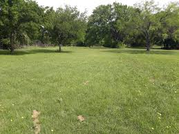 20 unrestricted/income producing acres with spring fed tank. - Texas  Alliance of Land Brokers