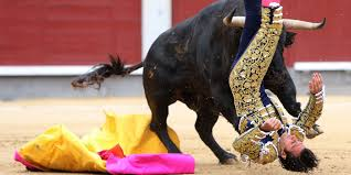 bull fighting injuries. Modren Fighting Spanish Bullfight Canceled After 3 Matadors Gruesomely Injured GRAPHIC  PHOTOS VIDEO  HuffPost Intended Bull Fighting Injuries N