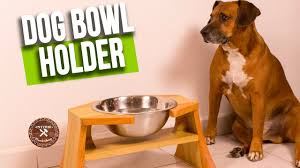 How to make Dog Bowl Holder | DIY Wood Dog Bowl Stand | Interio Workshop -  YouTube