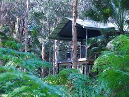 Blackheath Family U0026 Couples SelfContained Accommodation  Blue Treehouse Accommodation Nsw