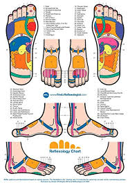Reflexology Chart The Museum Outlet Charts Of Reflexology Chart A3 Poster Print