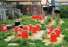 protecting garden from hail with buckets