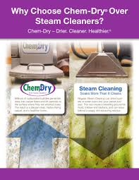 carpet cleaning flyer professional carpet cleaners tn carpet cleaners