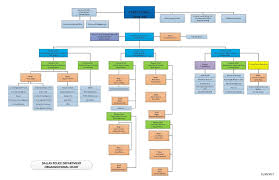 Dallas Police Organizational Chart Dallas Police Rank Structure Related Keywords Suggestions