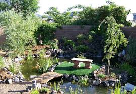 what is a koi pond and what you need