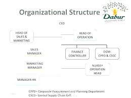 Department Flow Chart Template Top Marketing Department Structure Fresh Org Chart Template