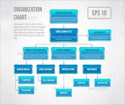 Illustrator Org Chart Template Infographic Design Organization Chart Template Vector Image