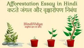 deforestation and afforestation essay legalization of marijuana deforestation and afforestation essay