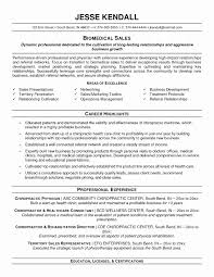 Combination Resume Sample Lovely 51 Lovely Bination Resume Examples