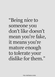 Be Nice Quotes Custom I Try To Be Civil Sometimes It's Hard But Nothing Good Will Come