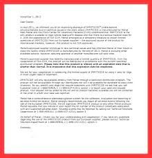 Letter Guarantee Template Awesome Resume For Jobs Examples