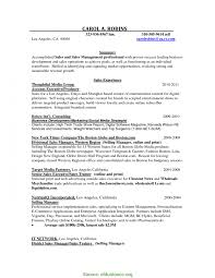Great Advertising Sales Executive Resume How To Write A Hook For An