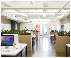 office plant displays. Meet The Startup Designing Breathtaking Office Plant Displays For Tech Giants R
