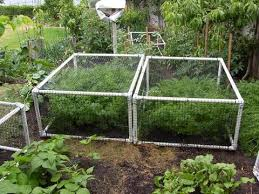 garden cages.  Garden PVC Netting Cage  Throughout Garden Cages E