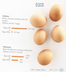Egg Yolk Colour Chart Paleo Foods Eggs Paleo Leap