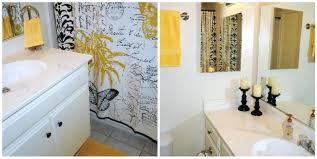 Apartment Bathroom Decorating Ideas Interesting Design