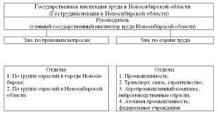 Реферат Государственный надзор и контроль в области охраны труда Рис 5 Схема государственной инспекции труда по Новосибирской области