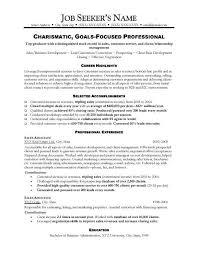 sales functional resume sample functional sales resume