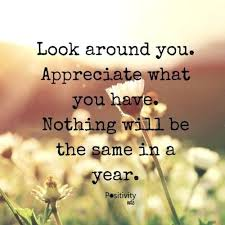 Quotes About Appreciating Life Impressive Quotes About Appreciating Life Dreaded Appreciation Quotes 48