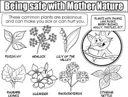 Many Poisonous Plants Coloring Mother Nature Safety