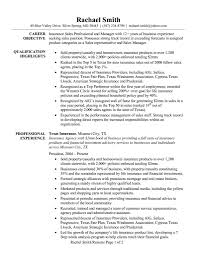 Sales Manager Resume Examples Resume Examples Sales Professional Copy Sales Director Resume 65
