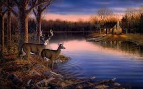 cool hunting backgrounds. Coolest Cool Hunting Backgrounds 492 Deer Hd Wallpapers Wallpaper Abyss
