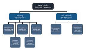 Metro Organization Chart Company Metro Interise Group Of Companies
