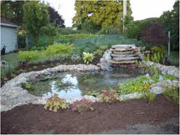 Backyard Ponds Backyards Awesome Backyard Ponds For Dummies Simple Backyard