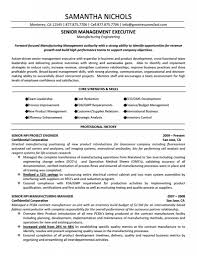 Management Cv Template Management Cv Template Managers Jobs Director Project Project