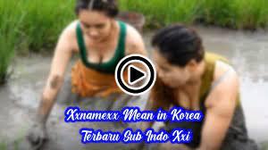 Video xxnamexx berarti sub indo dalam bahasa inggris. Xxnamexx Mean In Korea Terbaru 2020 Sub Indo Xxi Video Bokeh Full Hd