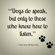 Quotes About Dogs Love Extraordinary Top 48 Greatest Dog Quotes And Sayings With Images