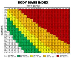 Obese Bmi Chart Bmi Chart For Morbidly Obese Best Picture Of Chart
