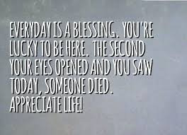 Celebrating Life Quotes Celebrating Life Quotes Today We Celebrate Your Life Quotes 85