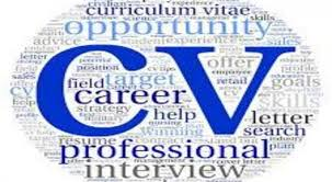 I Will Edit Write Or Rewrite Your Resume Cv And Cover Letter