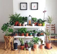 indoor plant stands ideas plant ideas to beauty your small home diy indoor plant stand ideas