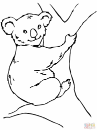 Small Picture Coloring Page Polar Bear Coloring Pages For Kids With Drawing