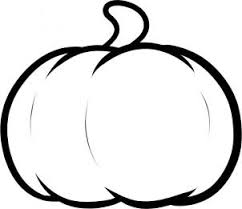 pumpkin drawing. once you clean up the drawing should have yourself a really nice sketch of pumpkin that can be proud of. color it in and even make smaller i