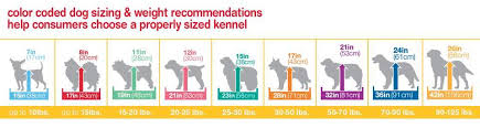 dog crates size chart vari kennels sizes goldenacresdogs com