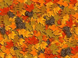 Fall Images Free Autumn Or Fall Free Photographic Computer Desktop Wallpaper For Your